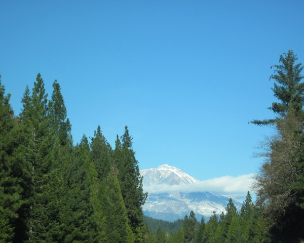 ... and Mt. Shasta is still without her covering.