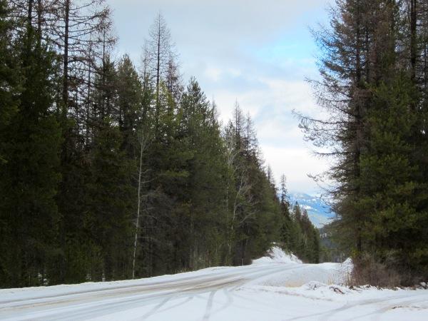 Snow, snow ... no more snow ...