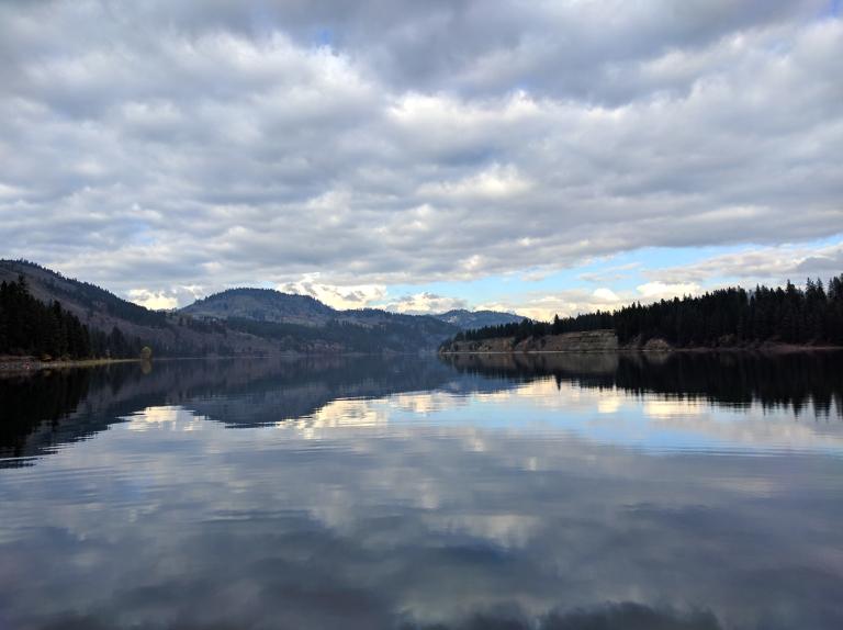 reflect020
