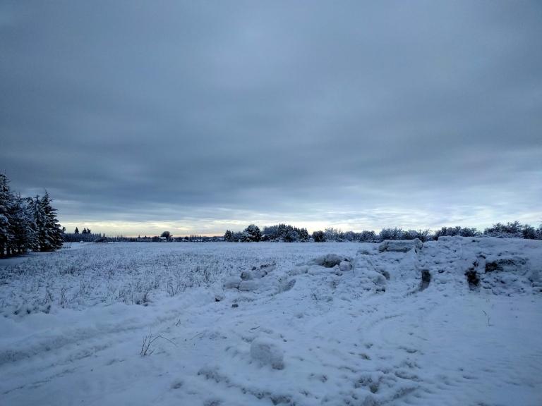 winter16301